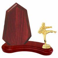Trofeu lemn WF404Figurina Karate F10