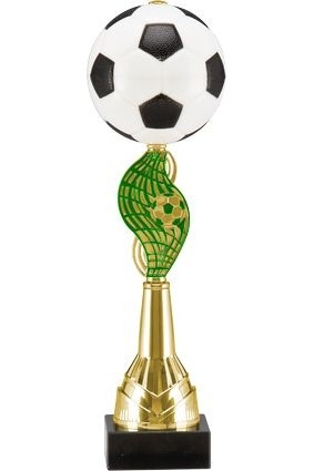 Cupa fotbal 8230