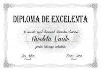 Diploma de excelenta E001