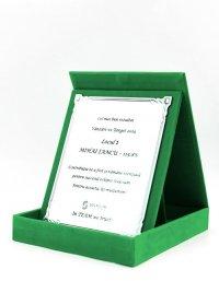 Cutie Placheta Model PLD16H verde