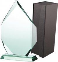 trofeu sticla G018