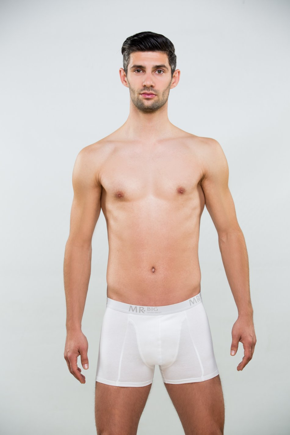Mr.Big model 201 alb 1