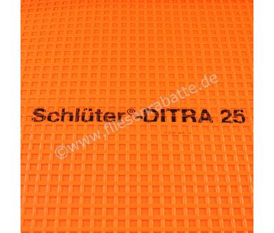 schlueterditraditra2530m3